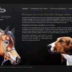 Artiste-peintre-animalier Armelle Desages